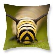 Monarch Butterfly Caterpillar I Throw Pillow