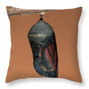 Monarch Butterfly Chrysalis II Throw Pillow