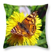 Monarch Butterfly Feeding On A Yellow Dandelion Flower Throw Pillow