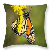 Monarch Butterfly On Goldenrod Throw Pillow
