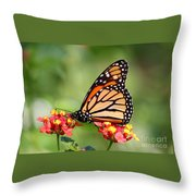 Monarch Butterfly On Lantana Flowers Throw Pillow