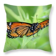 Monarch Butterfly Rocking Chair Throw Pillow