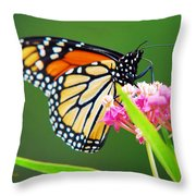 Monarch Butterfly Simple Pleasure Throw Pillow