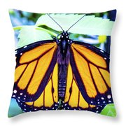Monarch I Throw Pillow
