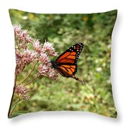 Monarch Of The North Throw Pillow