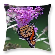 Monarch On Butterfly Bush Throw Pillow