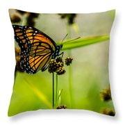 Monarch On Her Throne Throw Pillow