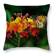 Monarch On Pride Of Barbados Throw Pillow