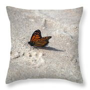 Monarch On The Beach Throw Pillow