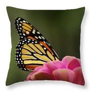 Monarch On Zinnia Throw Pillow