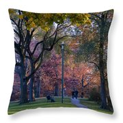 Monarch Park - 133 Throw Pillow