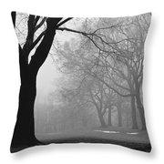 Monarch Park - 321 Throw Pillow