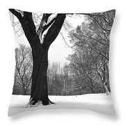 Monarch Park - 324 Throw Pillow
