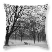 Monarch Park Ground Fog Throw Pillow