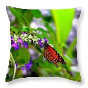 Monarch With Sweet Nectar Throw Pillow