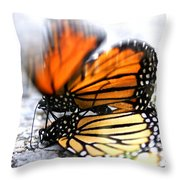 Monarchs In Love Throw Pillow