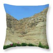 Monastary On The 40-day Mountain Throw Pillow