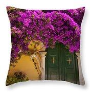 Monastery Door Throw Pillow