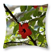 Monastery Throw Pillow