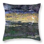Monetish Egret Throw Pillow