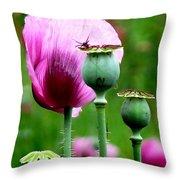Monet's Garden-giverny Throw Pillow