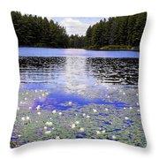 Monet's Prelude Throw Pillow