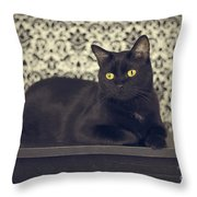 Mongo The Robust Cat Throw Pillow