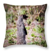 Mongoose Standing. Safari In Serengeti Throw Pillow