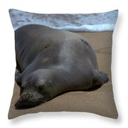 Monk Seal Sunning Throw Pillow by Brian Harig
