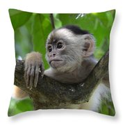 Monkey Business Throw Pillow by Bob Christopher