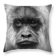 Monkey Eyes Throw Pillow