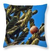 Monkey Puzzle Tree B Throw Pillow