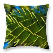 Monkey Puzzle Tree D Throw Pillow