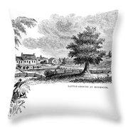 Monmouth Battlefield Throw Pillow