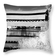 Mono Bridge Throw Pillow