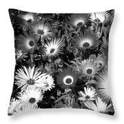 Monochrome Asters Throw Pillow