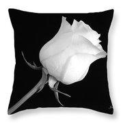 Monochrome White Rose Throw Pillow