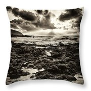 Monotone Explosion Throw Pillow