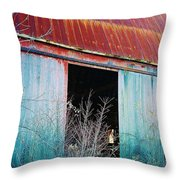 Monroe Co. Michigan Barn Throw Pillow