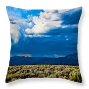 Monsoons In July Throw Pillow