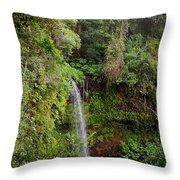 Montagne D'ambre National Park Madagascar 5 Throw Pillow