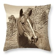 Montana Horse Portrait In Sepia Throw Pillow