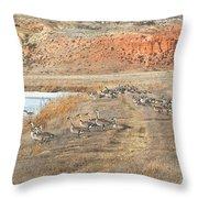 Montana Spring Thaw Throw Pillow
