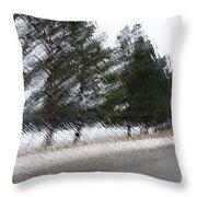 Montana Weather Report Throw Pillow