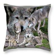 Montana Wolf Pack Throw Pillow
