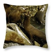 Monterey Bay Where The Seals Play Throw Pillow