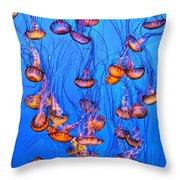 Monterey Jellies  Throw Pillow