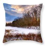 Monterey Lake Snow Day Throw Pillow