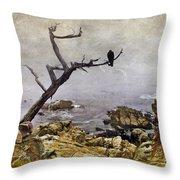 Monterey Mist Throw Pillow