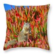 Monterey Squirrel Throw Pillow